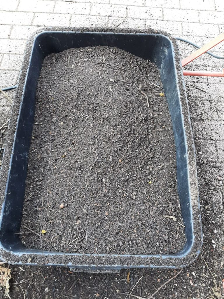 Kompostsieb Kompost gesiebt
